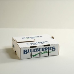 5lb Blueberry Carton Self-Locking