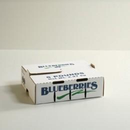 5lb Blueberry Carton Self-Locking