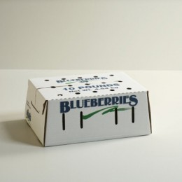 10lb Bulk Blueberry Carton Self-Locking