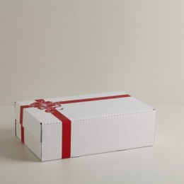 #420WS - Two Layer Gift Set- Carton & Lid - White