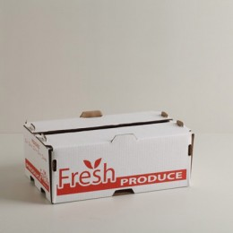 #7006 - 25Lb Peach/Tomato Carton - Gap Top