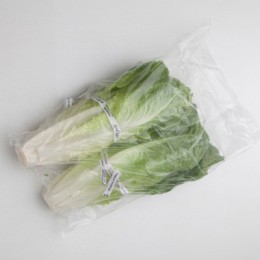 Large Produce Bag - Clear Vented Poly