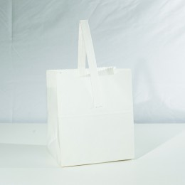 Paper Handle Bag Half Peck - Plain White