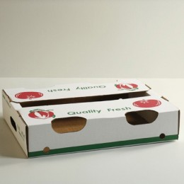 10lb Tomato Flat Pack - Green & Red Print