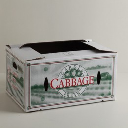 50lb Cabbage Carton - Cascaded
