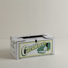 24 Count Cucumber Carton - Large