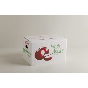 Apple Traymaster Carton