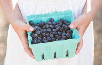Rockford Package Supplies Berry Trays - Amy Paulson Photography