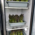 Asparagus Season is Here!